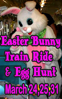 The Delaware River Railroad Excursions Fun Things to do in NJ